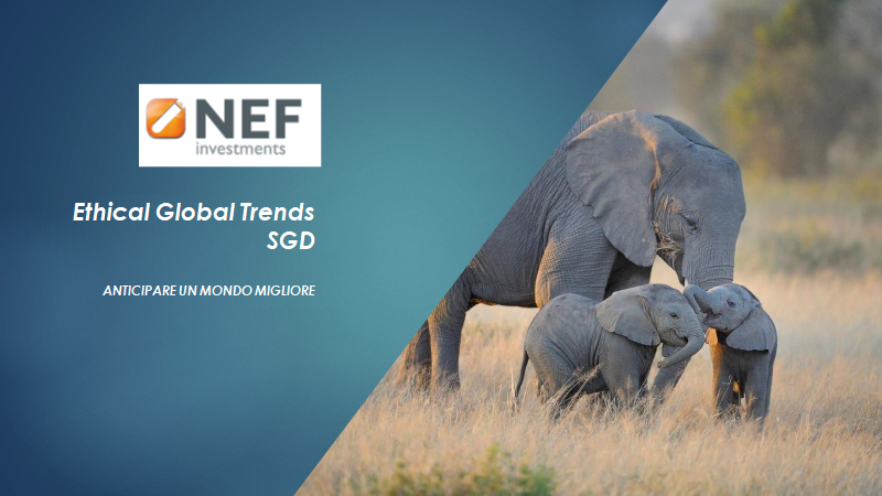 NEF Ethical Global Trends SDG